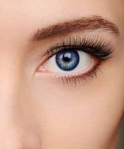 eye brow waxing in north shields at heaven therapy beauty salon