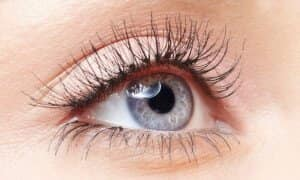 Lash Lift Voucher